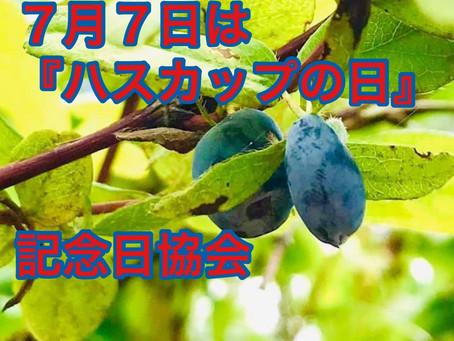 ハスカップの日は7月7日(七夕祭り)