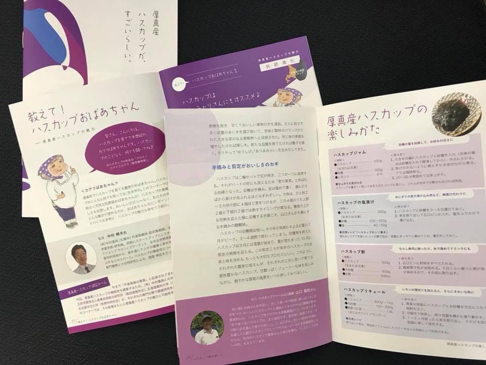 厚真産ハスカップ 小冊子 最新バージョン 札幌市