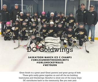 DC Goldwings2.png