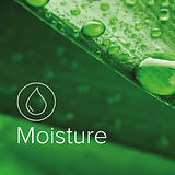 Inst_ We got it covered. Moisture.jpg