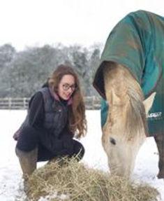 arina horse.jpg