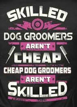 cheap groomer.jpg