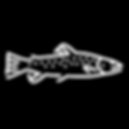 Joey's Fly Fishing Foundation - Cutt Sla