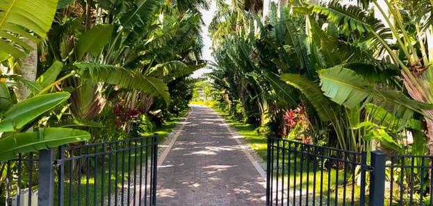 Grace River Island Resort - Private Driv