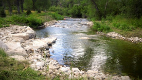 PINEY CREEK, STORY, WY           STEADY STREAM HYDROLOGY