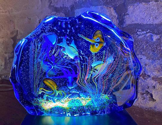 Acquario exclusive blue