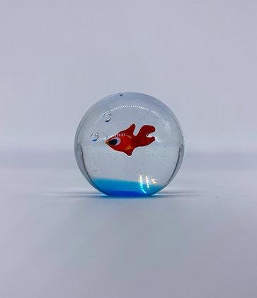 Pesce rosso sfera