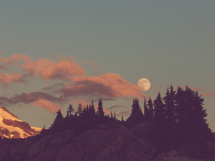Aligning With the Cosmos| New Moon in Cancer July 9th 2021