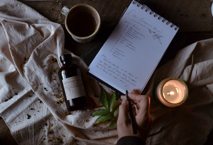 Elder Herbal Monograph   Get to know the folk remedy for cold & flu