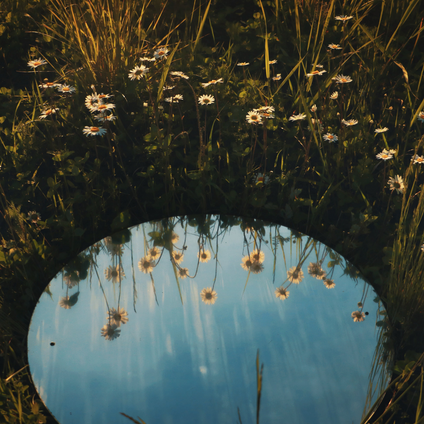 Aligning with the Cosmos | Full Moon Astrology for June 2021