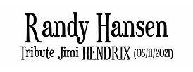 bouton HENDRIX.jpg