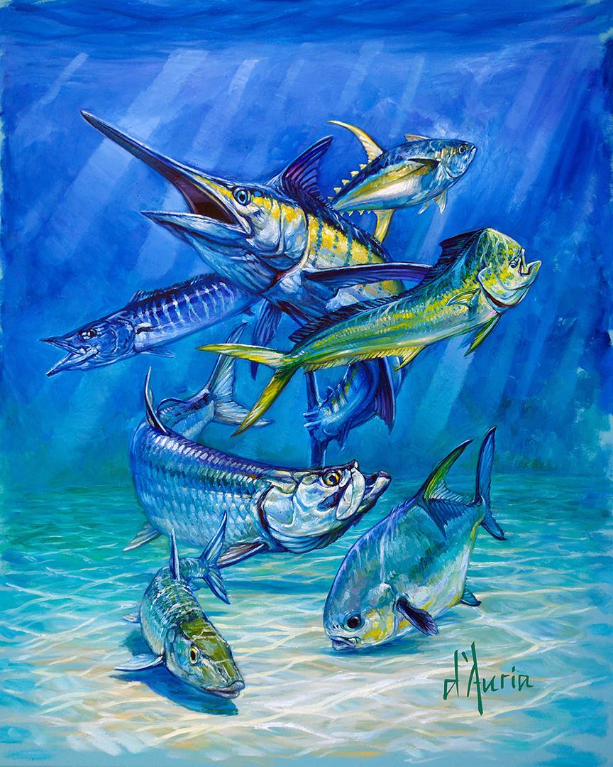 Inshore-Offshore-marlin-mahi-tuna-wahoo-