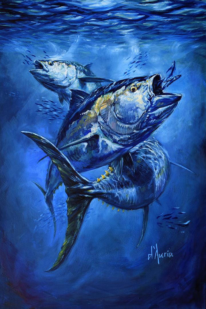 Tuna-dauria-bluefin-yellowfin-fine-art-p