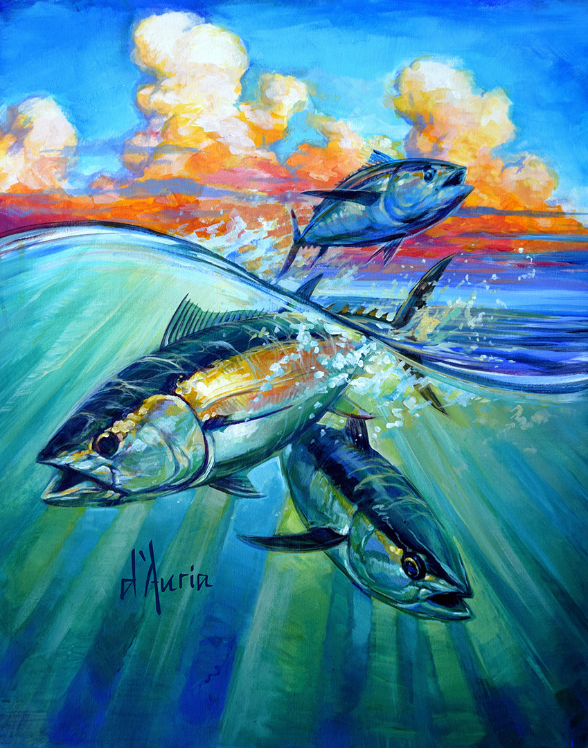 Tuna-blackfin-fishing-art-painting-offsh