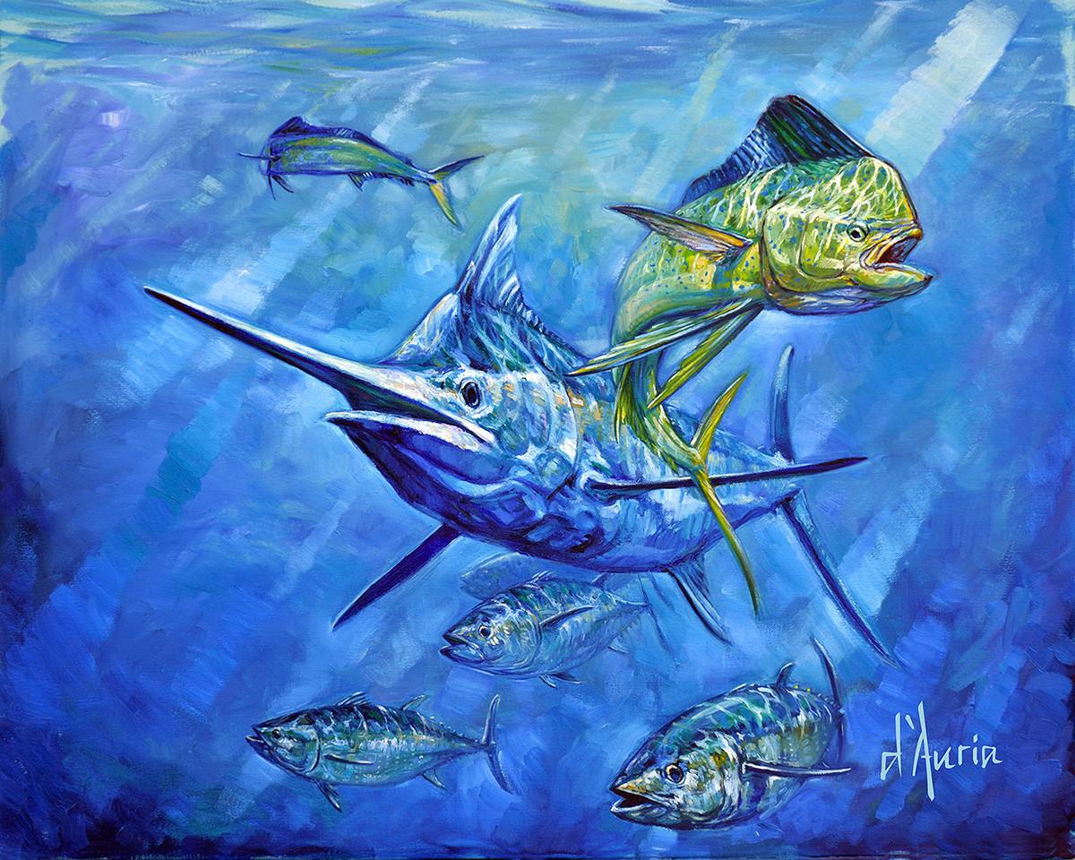 Hybrid-Marlin-Dorado-Tuna-mahi-dolphin-p