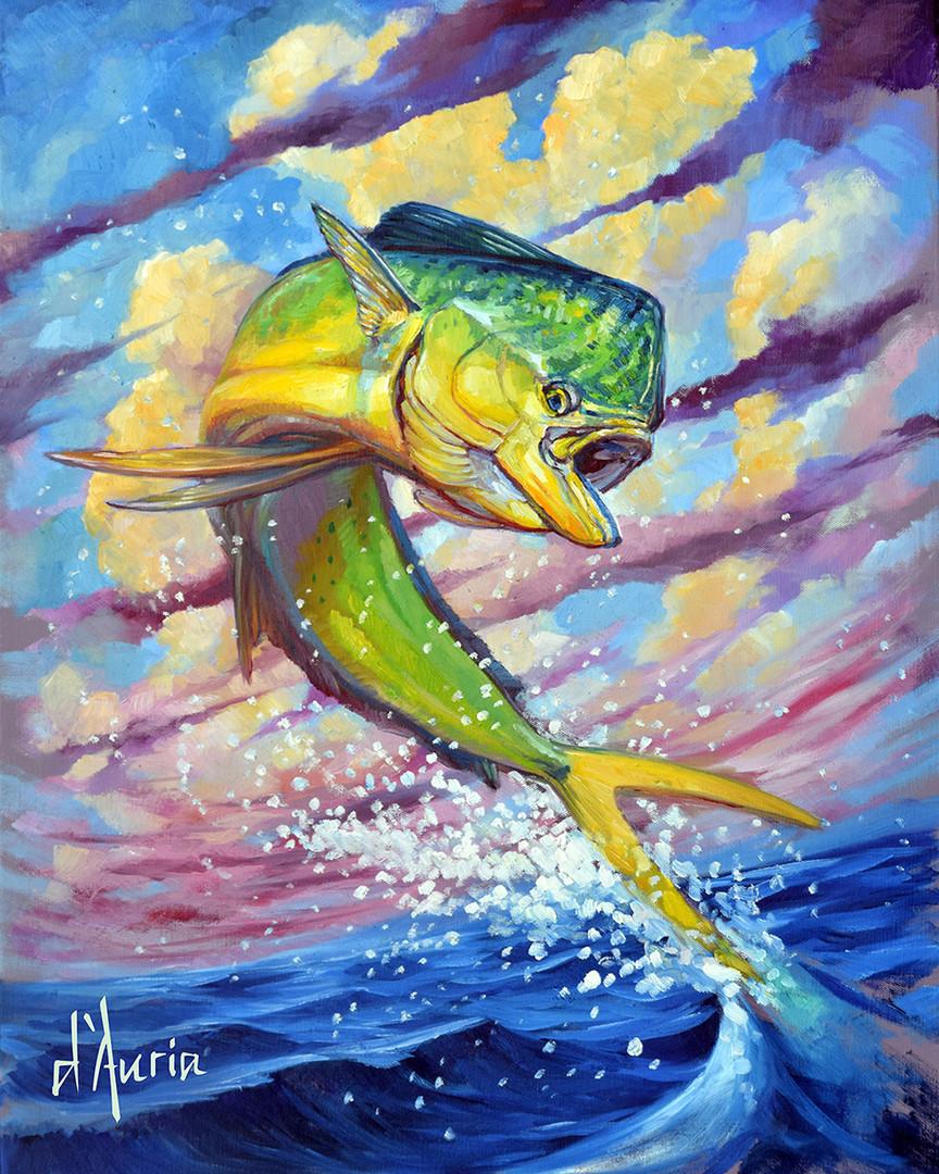 Dorado-dolphin-fish-mahi-Hybrid-apparel-