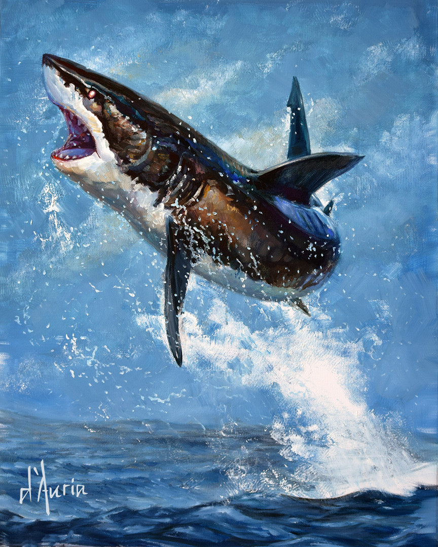 Great-White-Shark-breaching-jumping-shar
