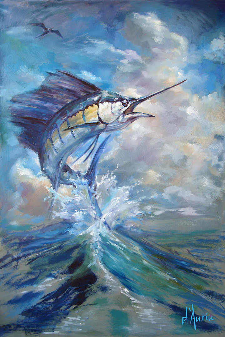 Sailfish-and-Frigate-florida-fishing-sal
