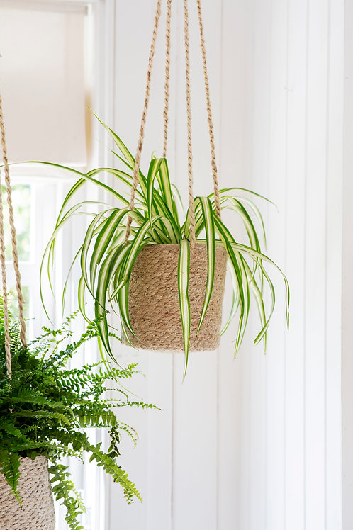 Garden Trading Woven Hanging Plant Pot