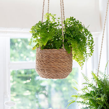 Hanging Plant Pot, Short - Seagrass - HP