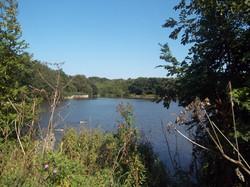 Hazelslade Nature Reserve
