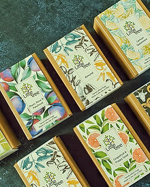 Little Tree Soaps Soap Boxes