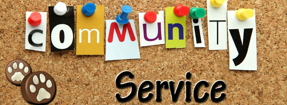 community service.jpg