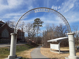 Vestal Community Organization