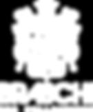 logo-braschi-white.png