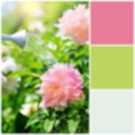 Pink and Green Floral Color Palette