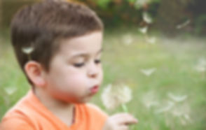 blowing-blurred-background-boy-1231215.j
