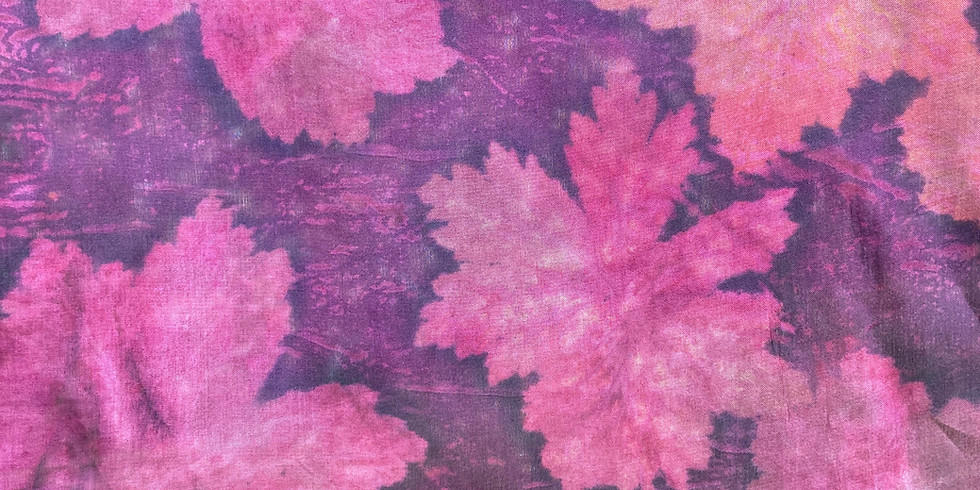 Iron and Colour in Botanical Contact Printing