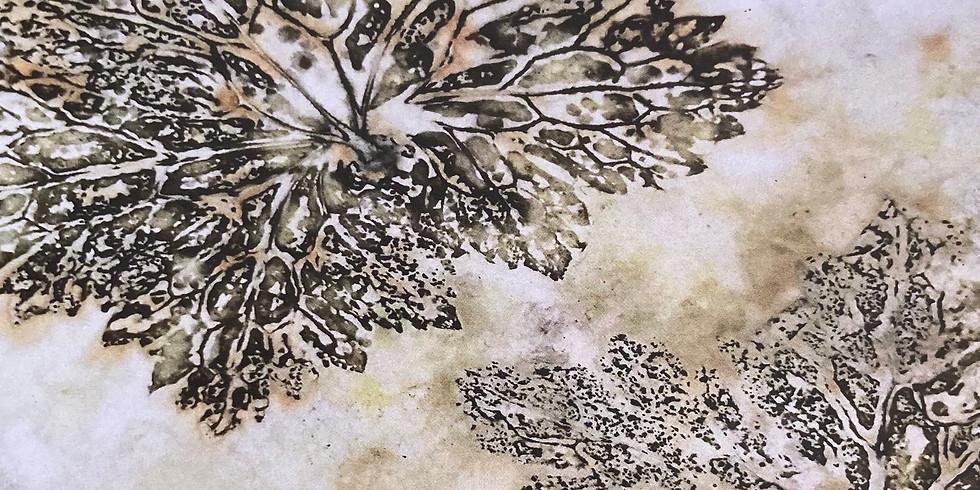 Botanical Contact [Eco] Printing: An Introduction