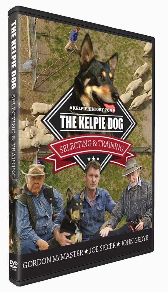 The Kelpie Dog DVD
