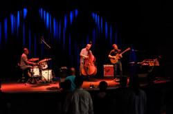 Luke Polipnick Trio