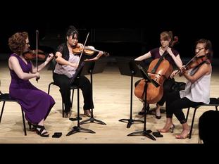 Semiosis Quartet