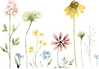 Wildflower Scene 2 SMALL.png