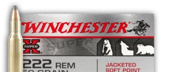 WINCHESTER 222 REM 50GR JSP (20)
