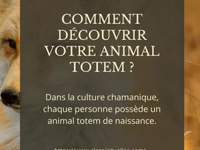 Comment découvrir votre animal totem ?