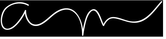 ann logo white.png