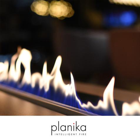 Planika-Be-A-Bear.jpg