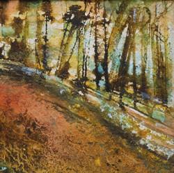 Autumn Path through Wittenham Woods