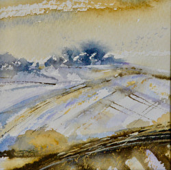 Winter Flight, Wittenham Clumps