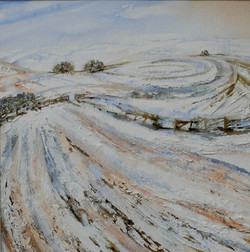 The First Snow on Wittenham Clumps