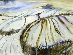 Snow Blankets Wittenham Clumps