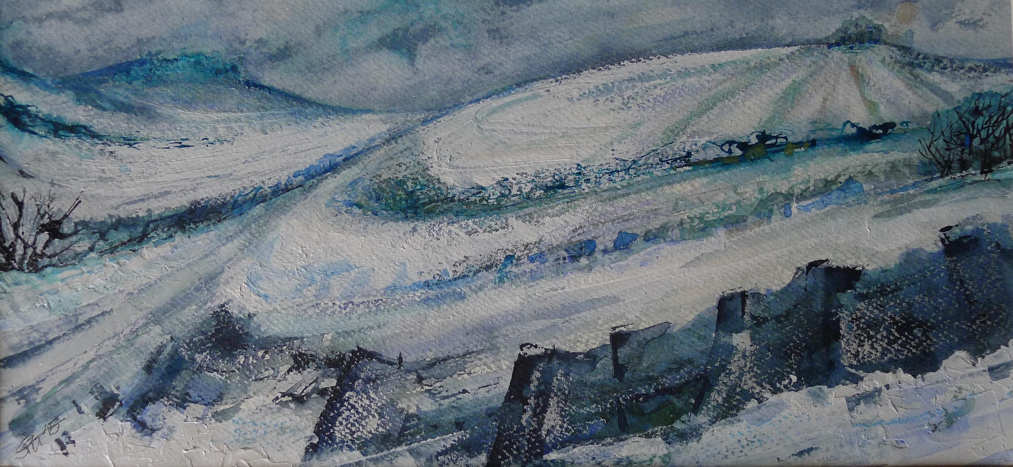 Snowy Night Sky - Wittenham Clumps