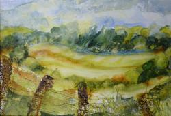 Edge of the Woods, Little Wittenham