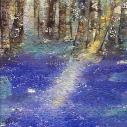 Edge of the Bluebell Wood