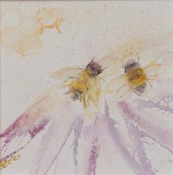 Honeybees at Work