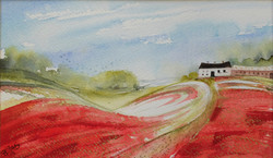 The Ridgeway - Poppy Clad Farmland